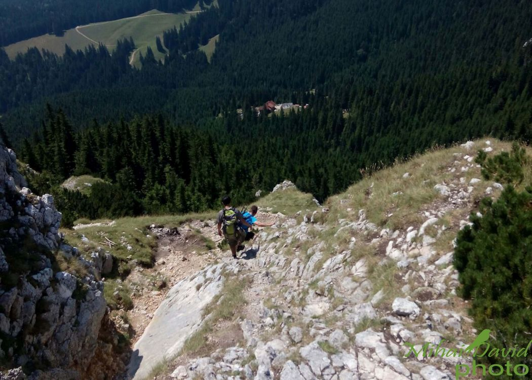 hiking-transylvania-carpathians-tours-9