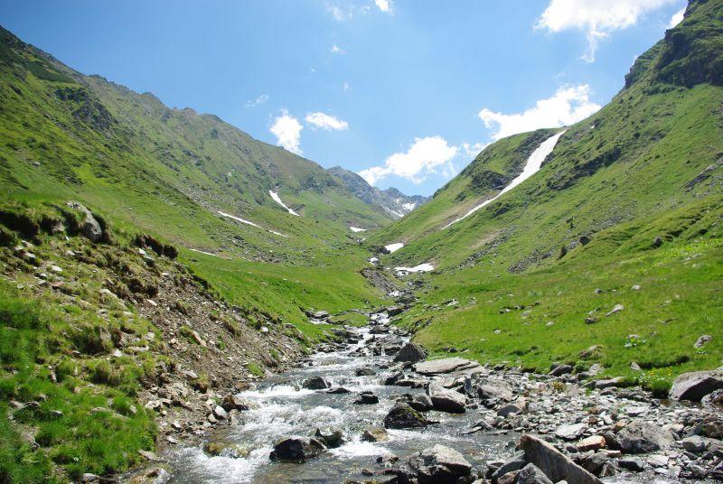 Carpathians-hiking-wildlife-tours