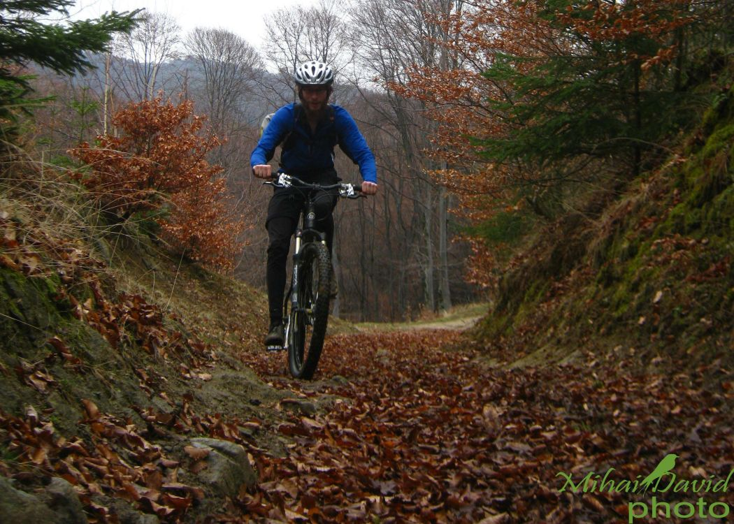 cycling-transylvania-carpathians-tours-6