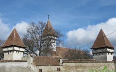 Rumänische Kultur- & Naturreise: Donaudelta, Klöster aus Bukowina und Siebenbürgen