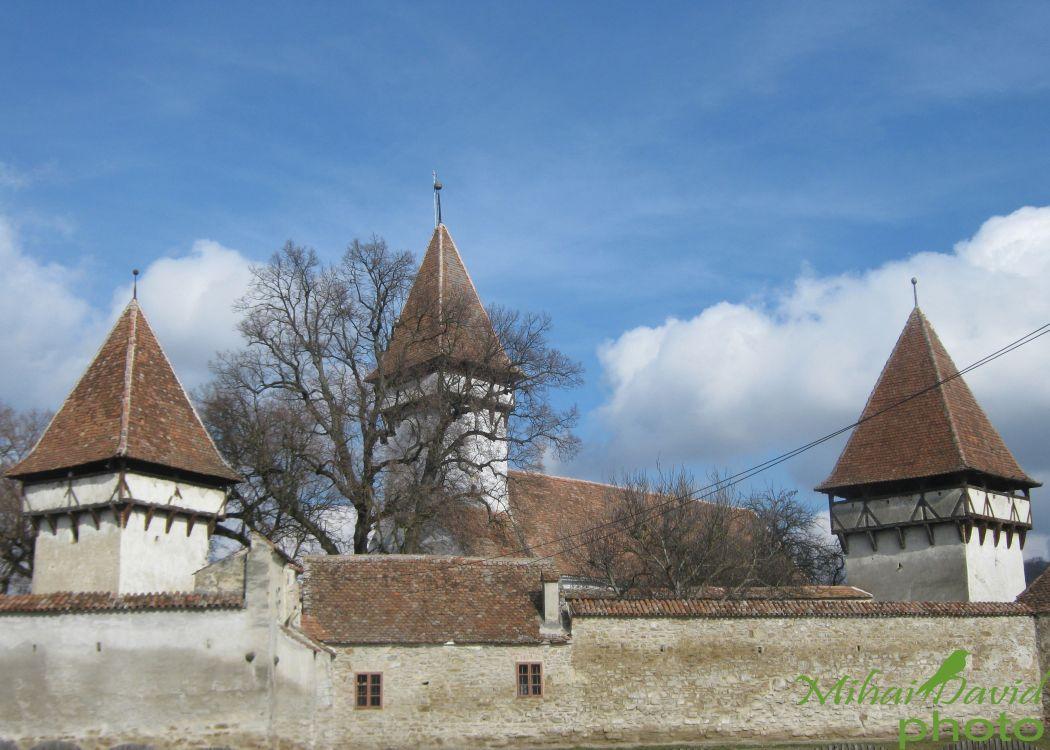 romanian-cultural-tours-8