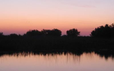 Vogelbeobachtung im Donaudelta & Dobrogea – 7 Tage Tour