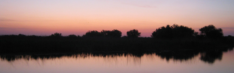 Birdwatching Tour in Danube Delta & Dobrogea – 7 days