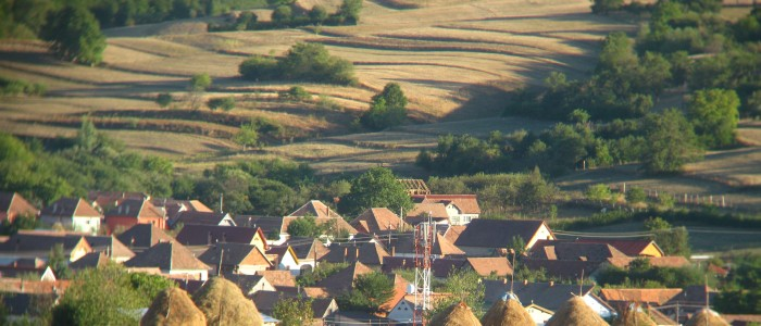 cycling-tours-transylvania-meadows-rural