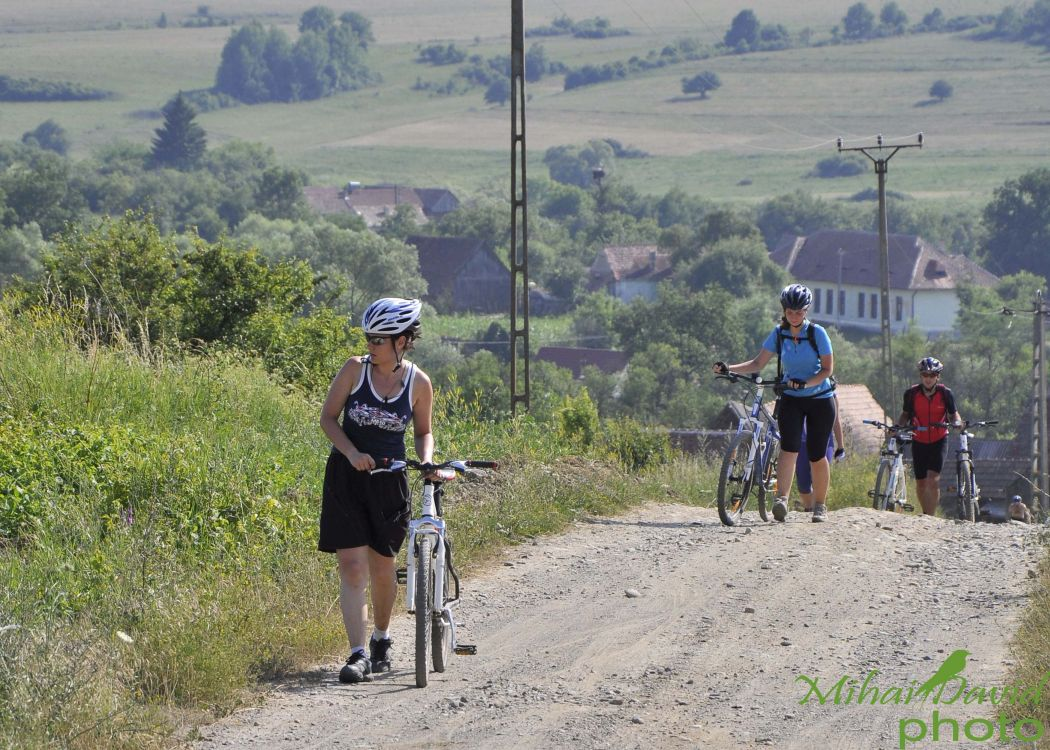 cycling- tours-2