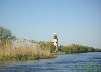 romanian-tours-danube-delta-wildlife-5