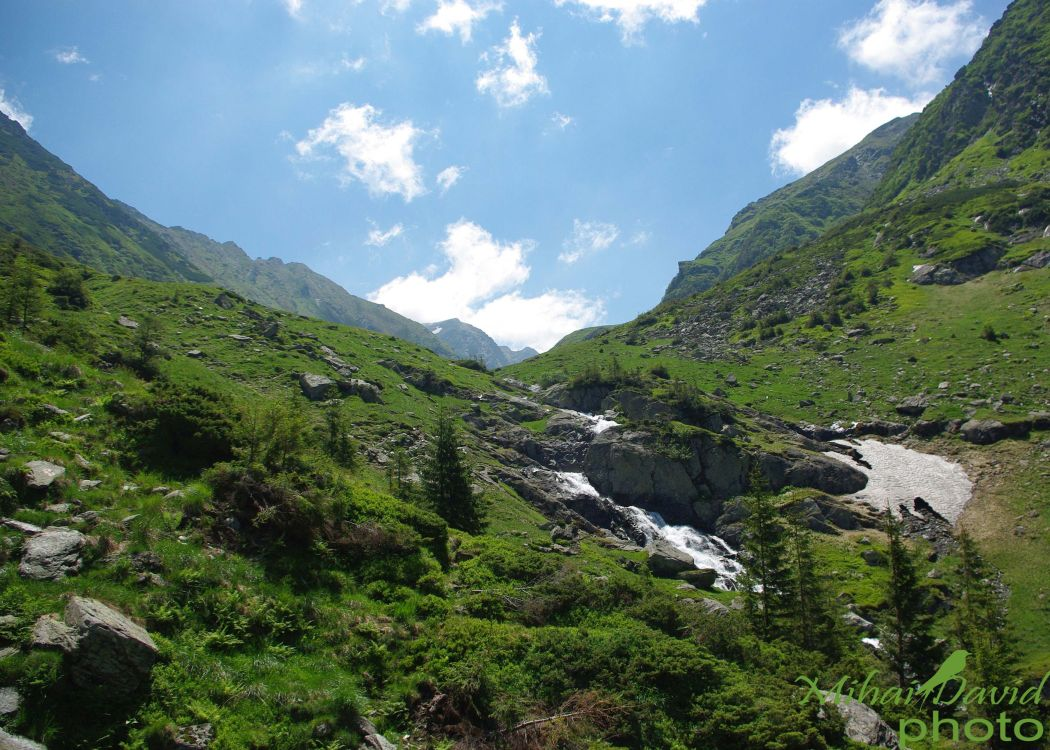hiking-transylvania-carpathians-tours-7