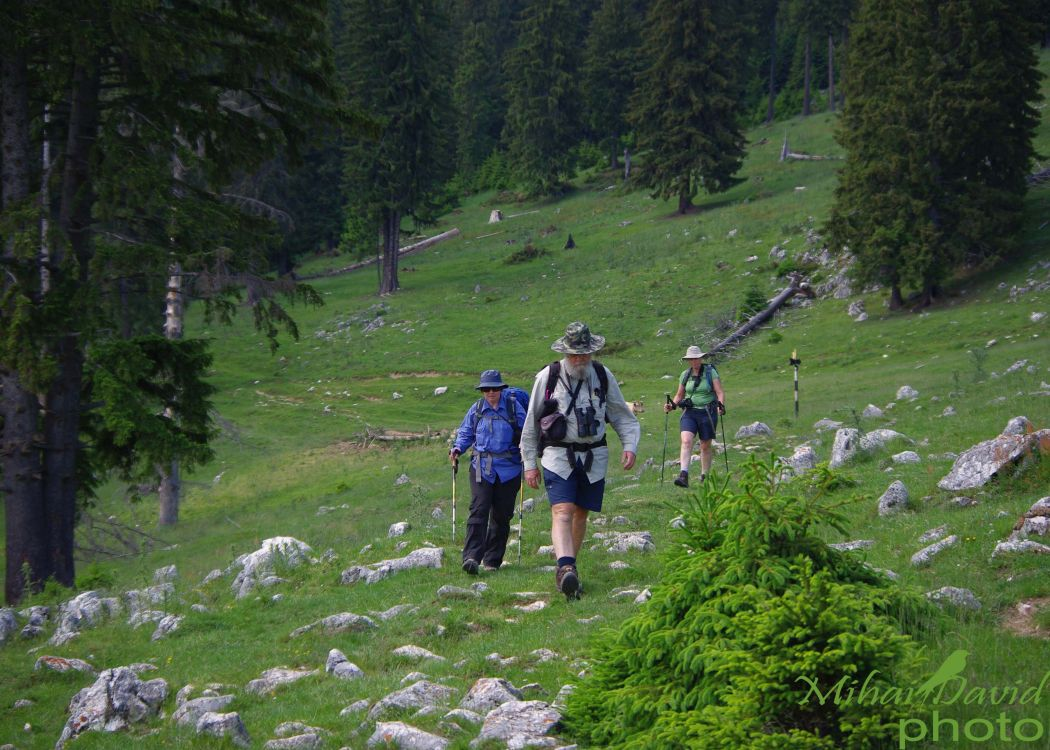hiking-transylvania-carpathians-tours-3