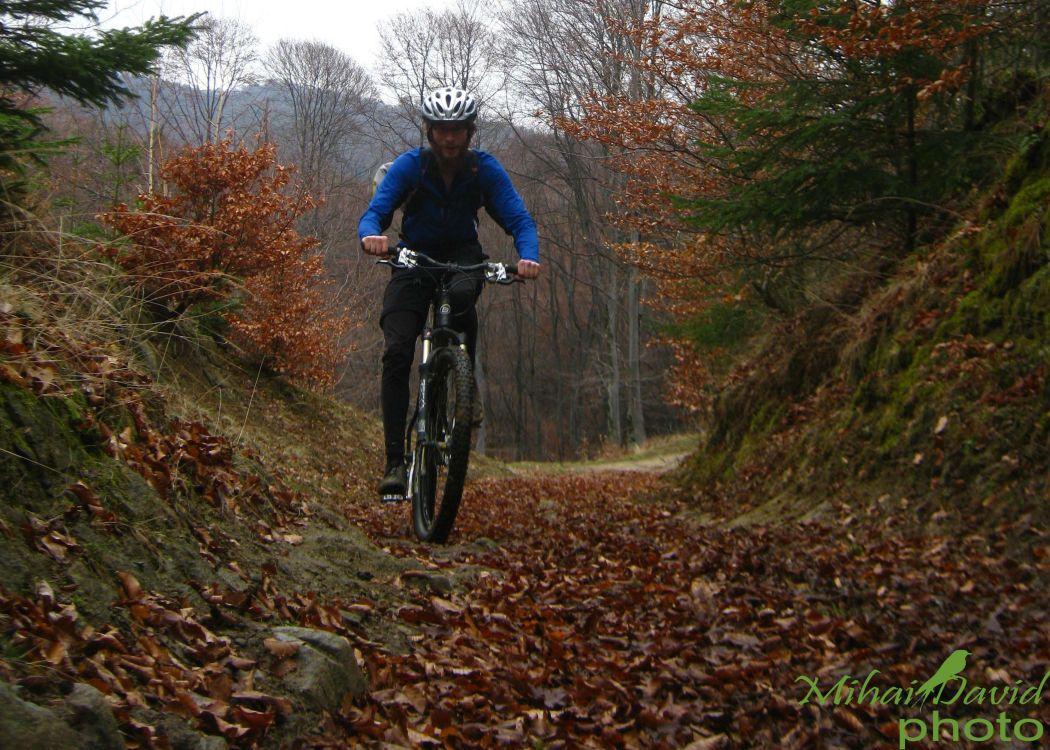 cycling-transylvania-carpathians-tours-6