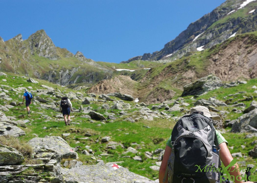 hiking-transylvania-carpathians-tours