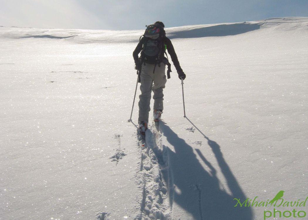 hiking-transylvania-carpathians-tours-2