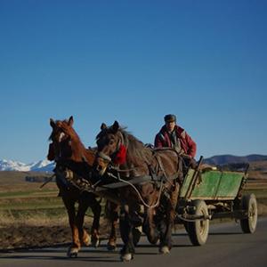 Transylvanian-Tours
