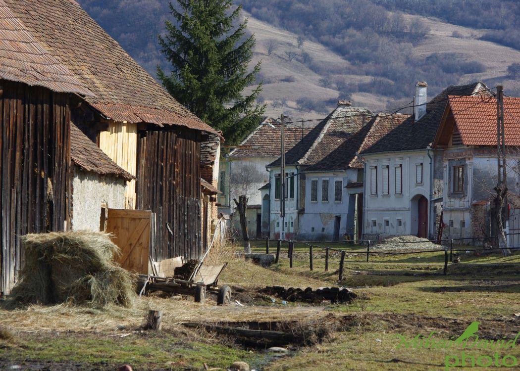 romanian-cultural-tours-4