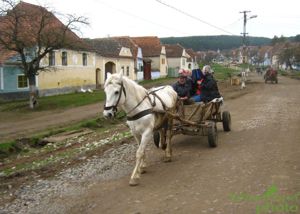 romanian-cultural-tours-10