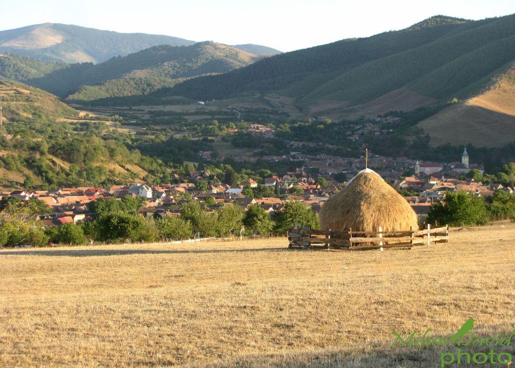 romanian-cultural-tours-6