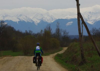 wildlife&cycling